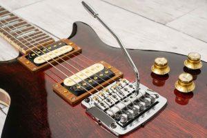 De Leeuw Guitars Interview 1 Ton parcours ?