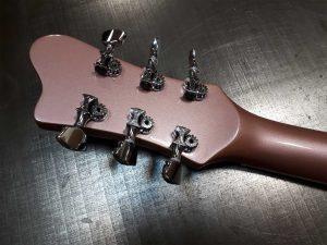 Roadrunner Guitars Boomerang Custom model