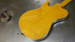 Roadrunner Guitars Federal Unique Custom model