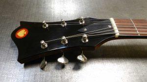 Roadrunner Guitars Champion Single Cutaway